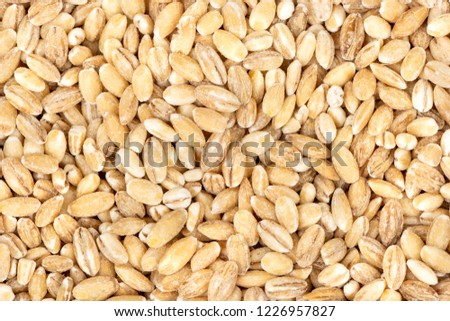 Background from scattered raw pearl barley closeup #1226957827