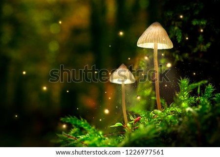 Glowing mushroom lamps with fireflies in magical forest Royalty-Free Stock Photo #1226977561