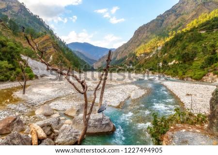 Mountain river valley with scenic landscape near Munsiyari Uttarakhand India. #1227494905