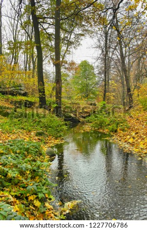Beautiful autumn park, trees and leaves.  Landscape.  Forest in Autumn. #1227706786