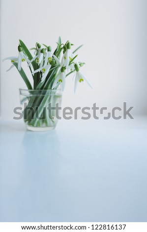 bouquet of snowdrops in a glass #122816137