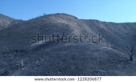 Woolsey Fire 2018 in Malibu California #1228206877