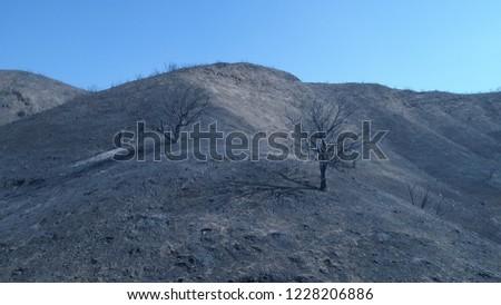 Woolsey Fire 2018 in Malibu California #1228206886