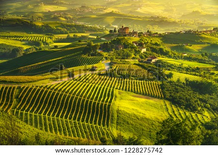 Langhe vineyards sunset panorama, Grinzane Cavour, Unesco Site, Piedmont, Northern Italy Europe. #1228275742