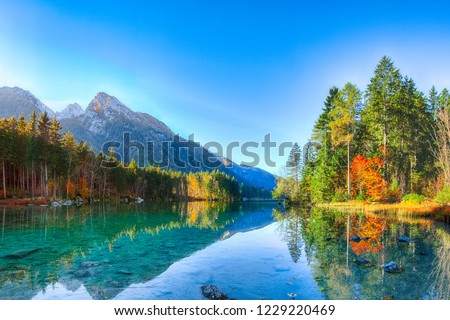 autumn sunrise of Hintersee lake. Beautiful scene of trees near turquoise water of Hintersee lake. Location: resort Ramsau, National park Berchtesgadener Land, Upper Bavaria, Germany Alps, Europe #1229220469