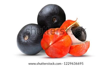 Acai and Guarana - Exotic Fruit #1229636695