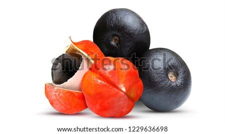 Acai and Guarana - Exotic Fruit #1229636698