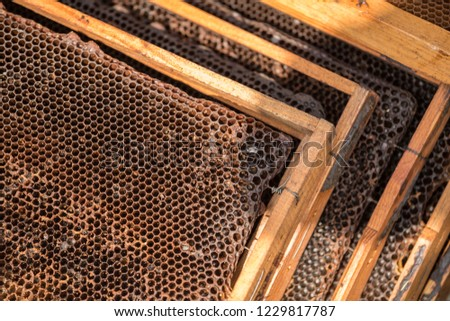 Honeycombs with honey and tools #1229817787