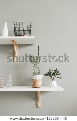 Pastel interior design concept with home plants. #1230084445