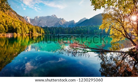 Colorful summer view of Fusine lake. Bright morning scene of Julian Alps with Mangart peak on background, Province of Udine, Italy, Europe. Traveling concept background. #1230295060