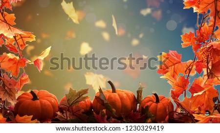 thanksgiving background image