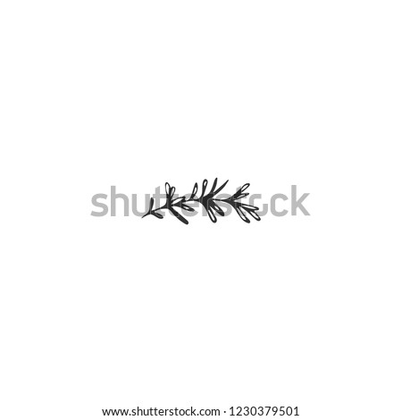 Vector hand drawn logo element, a sprig of rosemary. Isolated symbol for business branding and identity, for food blogs and websites, for cooking classes. Kitchen and food theme. Royalty-Free Stock Photo #1230379501