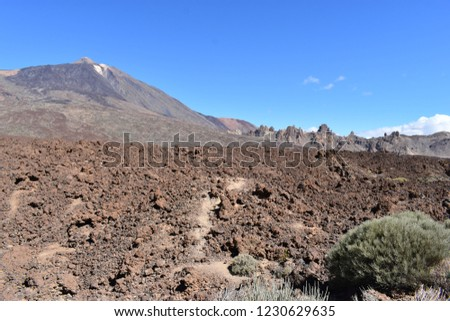 Famous Roques de Garcia at the Teide Volcano Mountain in Tenerife, Europe #1230629635