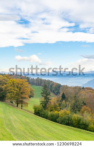 Hiking trail along a field with a view of the Swiss Alps #1230698224