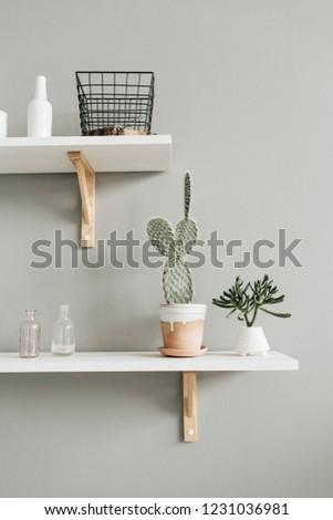 Minimal modern interior design. Cactus in flowerpot on white shelf at pastel wall. #1231036981