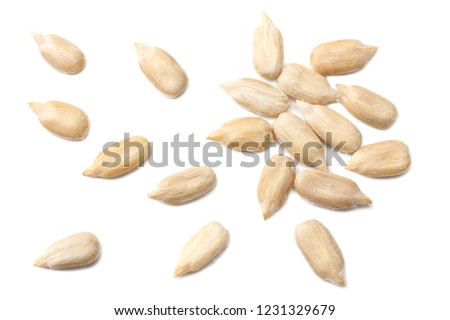 sunflower seeds isolated on white background. top view #1231329679