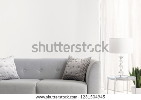 Grey velvet pillows on elegant sofa in bright new york style living room, real photo with copy space on the empty white wall #1231504945