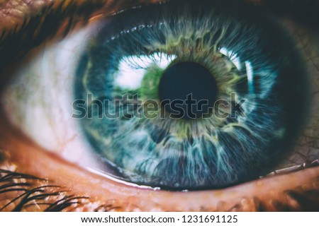 Beautiful macro photo of human eye, iris, pupil, eye lashes, eye lids.