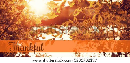 Thanksgiving greeting text against autumn leaves in front of a lake