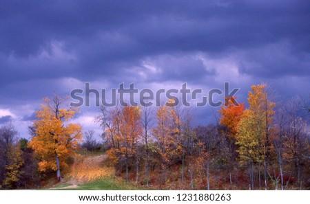 Fall landscape with dark sky #1231880263