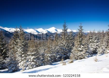 Winter mountains #123224158