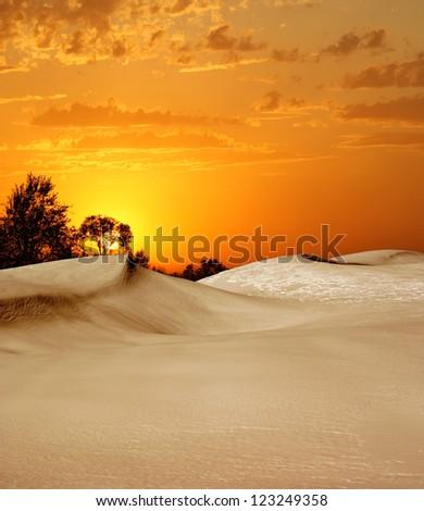 Landscape at sunset #123249358