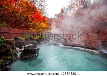 Japanese Hot Springs Onsen Natural Bath Surrounded by red-yellow leaves. In fall leaves fall in Yamagata. Japan. #1233053011
