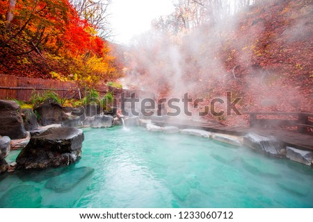 Japanese Hot Springs Onsen Natural Bath Surrounded by red-yellow leaves. In fall leaves fall in Yamagata. Japan. #1233060712