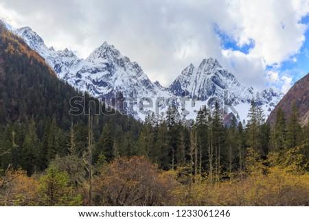 Xiageluo glacier at Mt Siguniang national park, China #1233061246