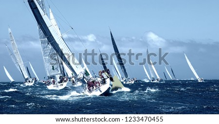 Sailboat under white sails at the regatta. Sailing yacht race #1233470455