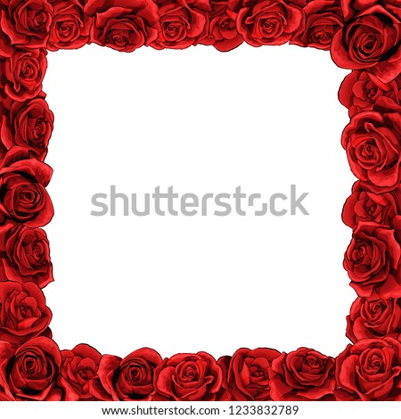 Square frame of red blossom rose scarlet flowers. Clip-art template for greeting card, wedding or Valentines day.