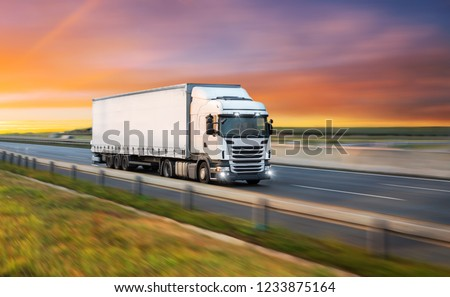 Truck with container on highway, cargo transportation concept. #1233875164