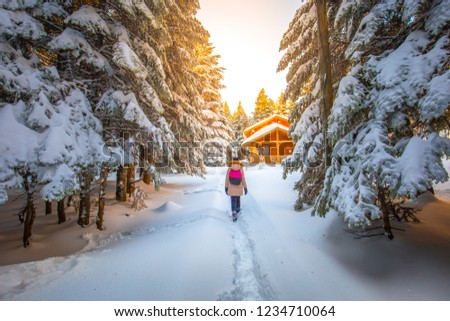 Girl walking in snowy forest meets with village houses. Snow covered trees and winter landscape.   Forest with snow landscape and chalets.  Uludag National Park, Bursa, Turkey  #1234710064
