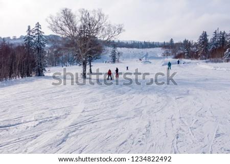 A ski resort on a sunny day. Hokkaido,Japan #1234822492