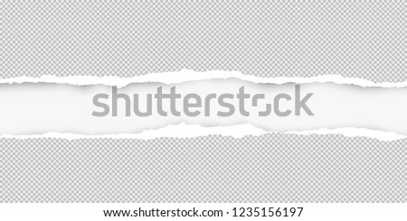 Squared ripped horizontal grey paper for text or message are on white background. Vector illustration Royalty-Free Stock Photo #1235156197