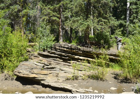 Flatbed Creek near Tumbler Ridge, British Columbia, Canada -  Tumbler Ridge UNESCO Global Geopark, the largest concentration of dinosaur traks in British Columbia. #1235219992