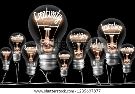Photo of light bulbs on wires with shining fibers in a shape of CREATIVITY concept related words isolated on black background #1235697877