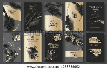 Vector huge banner set with tropical black leaves and gold splashes on dark background. Luxury exotic botanical design for cosmetics, spa, perfume, aroma, beauty salon. Best as wedding invitation card #1235736652