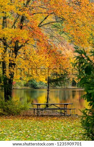 Fall Foliage at Ramapo Valley in New Jersey #1235909701