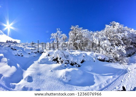 Andes mountains in winter #1236076966