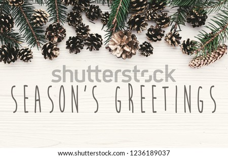 Season's greetings text on modern christmas flat lay with green fir branches, golden pine cones and stars. Holiday greeting card. Merry Christmas and Happy new year Royalty-Free Stock Photo #1236189037