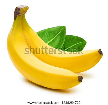 Bunch of bananas isolated on white background. Bananas with leaves Clipping Path #1236254722