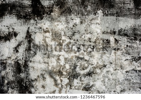 mildewed wall background, grunge texture of dirty cement wall #1236467596