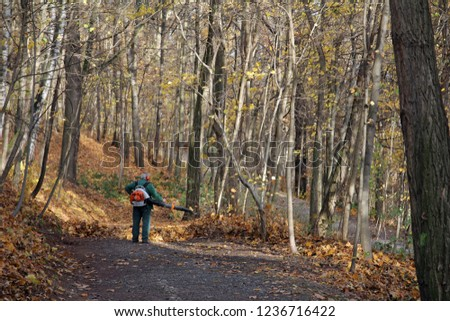 alone liberate the forest from leaves #1236716422