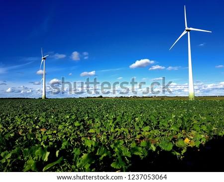 Wind turbines farm #1237053064