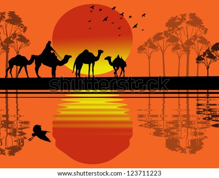 Bedouin camel caravan in wild africa landscape near water on sunset #123711223