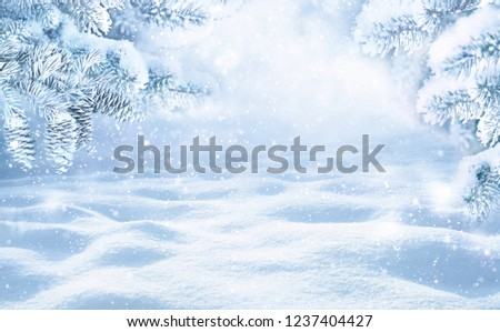 Winter Christmas scenic background with copy space. Snow landscape with spruce branches with cones covered snow close-up, snowdrifts and falling snow on nature outdoors, toned blue. #1237404427