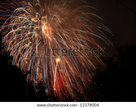 fireworks display Royalty-Free Stock Photo #12378004