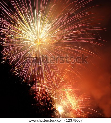 fireworks display Royalty-Free Stock Photo #12378007