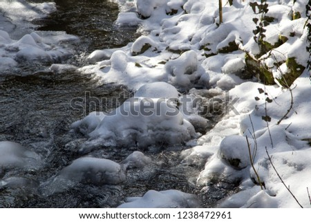 a small frozen and failed river in the woods of the rhön,  #1238472961
